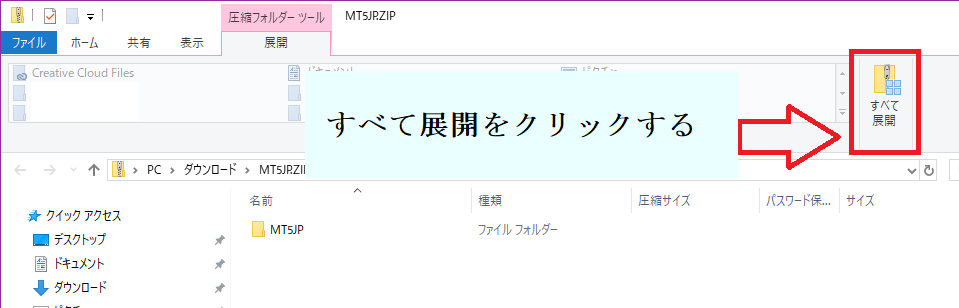 『FXmt_JP5』のZIPファイルを展開
